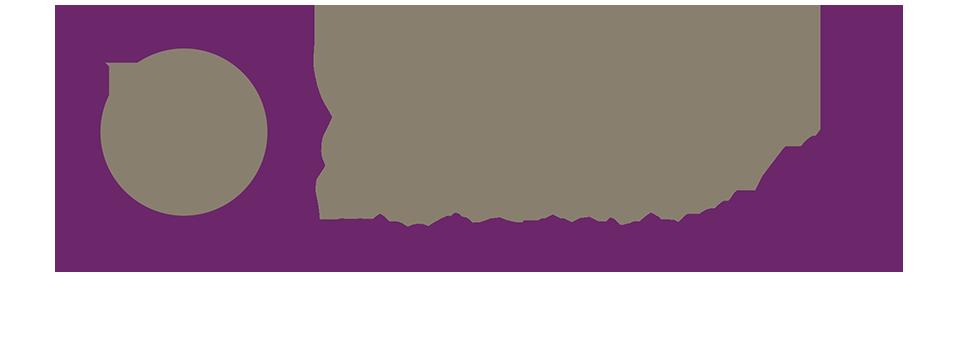 The Obesity Society
