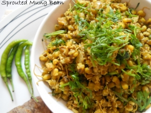 Sprouted Mung Bean Recipe