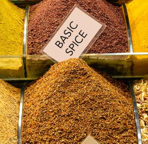 Basic Spice